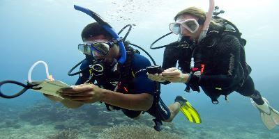 speciality-underwater-navigator-diver